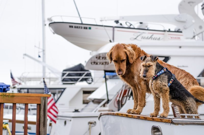 Ways to stay cool: Boating